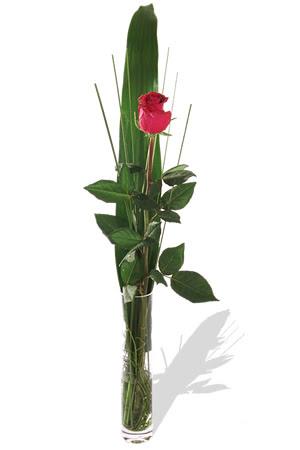1 adet cam vazo içerisinde kirmizi gül  Tekirdağ hediye çiçek yolla