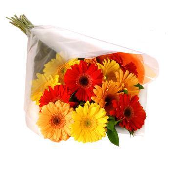 Karisik renklerde gerbera buketi  Tekirdağ 14 şubat sevgililer günü çiçek