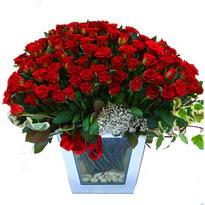 Tekirdağ çiçek siparişi vermek   101 adet kirmizi gül aranjmani
