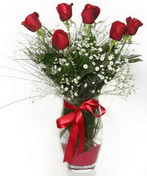 7 adet gülden cam içerisinde güller  Tekirdağ hediye sevgilime hediye çiçek