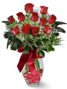 9 adet gül  Tekirdağ internetten çiçek siparişi  kirmizi gül