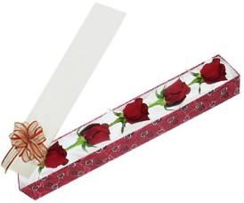 Tekirdağ internetten çiçek siparişi  kutu içerisinde 5 adet kirmizi gül