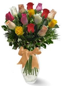 15 adet vazoda renkli gül  Tekirdağ internetten çiçek siparişi