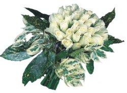 Tekirdağ online çiçek gönderme sipariş  9 Beyaz gül Özel kisiler için