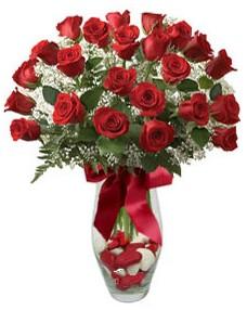 17 adet essiz kalitede kirmizi gül  Tekirdağ güvenli kaliteli hızlı çiçek