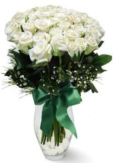 19 adet essiz kalitede beyaz gül  Tekirdağ çiçek siparişi vermek