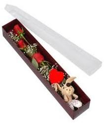 kutu içerisinde 3 adet gül ve oyuncak  Tekirdağ 14 şubat sevgililer günü çiçek