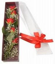 kutu içinde 5 adet kirmizi gül  Tekirdağ online çiçek gönderme sipariş