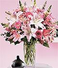 Tekirdağ çiçek gönderme sitemiz güvenlidir  Kazablanka biçme vazoda