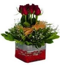 Tekirdağ çiçek satışı  7 adet mika yada cam vazoda gül tanzimi