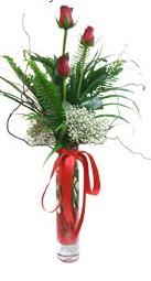Tekirdağ çiçekçiler  3 adet kirmizi gül vazo içerisinde