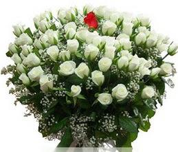 Tekirdağ internetten çiçek siparişi  100 adet beyaz 1 adet kirmizi gül buketi