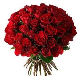 Tekirdağ hediye çiçek yolla  33 adet kırmızı gül buketi
