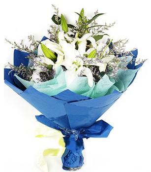 Tekirdağ çiçek online çiçek siparişi  4 adet dal kazablankadan görsel buket