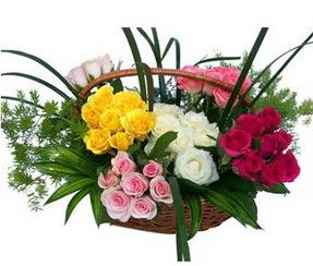Tekirdağ çiçekçi mağazası  35 adet rengarenk güllerden sepet tanzimi