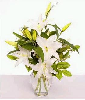 Tekirdağ çiçek satışı  2 dal cazablanca vazo çiçeği