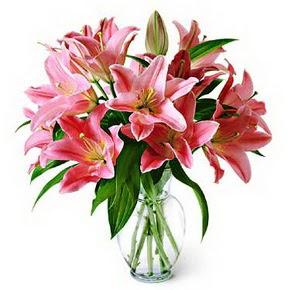 3 dal kazablanka görsel vazosu  Tekirdağ online çiçek gönderme sipariş