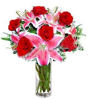 Tekirdağ çiçekçi telefonları  1 dal cazablanca ve 6 kırmızı gül çiçeği
