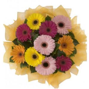 Tekirdağ çiçek yolla  11 adet karışık gerbera çiçeği buketi