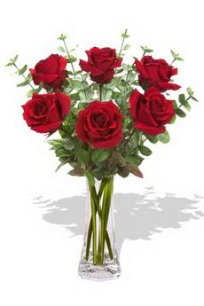 Tekirdağ internetten çiçek satışı  6 kırmızı gül vazosu