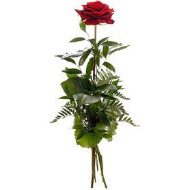 Tekirdağ İnternetten çiçek siparişi  1 adet kırmızı gülden buket