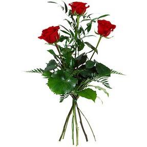 Tekirdağ anneler günü çiçek yolla  3 adet kırmızı gülden buket