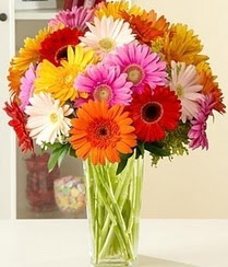Tekirdağ kaliteli taze ve ucuz çiçekler  15 adet gerbera çiçek vazosu