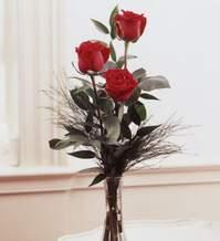 Tekirdağ internetten çiçek siparişi  Vazoda 3 adet güzel gül