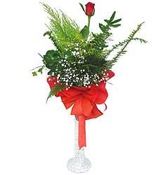 Tekirdağ çiçek online çiçek siparişi  Cam vazoda masum tek gül