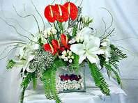 Tekirdağ güvenli kaliteli hızlı çiçek  Anthurim Kazablanka  gül