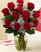 Sevgilime hediye 9 adet 1.ci kalite gül  Tekirdağ çiçek online çiçek siparişi