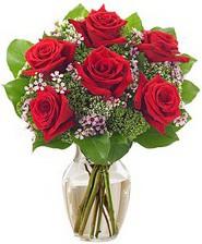 Kız arkadaşıma hediye 6 kırmızı gül  Tekirdağ online çiçek gönderme sipariş