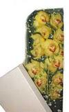 Tekirdağ çiçek satışı  Kutu içerisine dal cymbidium orkide