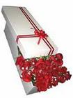 Tekirdağ çiçek , çiçekçi , çiçekçilik  11 adet 1.kalite magnum güller