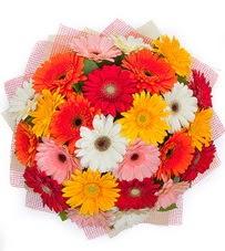 15 adet renkli gerbera buketi  Tekirdağ çiçek yolla , çiçek gönder , çiçekçi