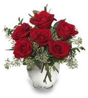 Vazo içerisinde 5 adet kırmızı gül  Tekirdağ internetten çiçek satışı