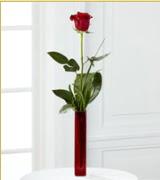 Vazo içerisinde 1 adet kırmızı gül  Tekirdağ online çiçek gönderme sipariş