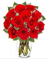 12 adet vazoda kıpkırmızı gül  Tekirdağ uluslararası çiçek gönderme