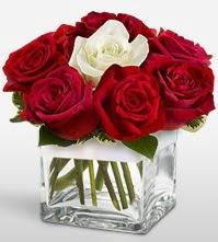 Tek aşkımsın çiçeği 8 kırmızı 1 beyaz gül  Tekirdağ anneler günü çiçek yolla