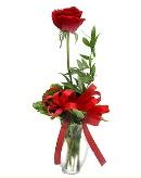 vazo içerisinde 1 adet kırmızı gül  Tekirdağ çiçek , çiçekçi , çiçekçilik