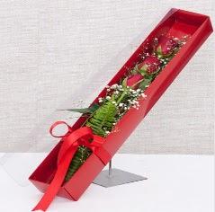 Kutu içerisinde 3 adet kırmızı gül  Tekirdağ cicekciler , cicek siparisi