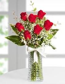 Cam vazoda 7 adet kırmızı gül  Tekirdağ hediye çiçek yolla