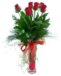 vazo içerisinde 5 kırmızı gül  Tekirdağ online çiçekçi , çiçek siparişi
