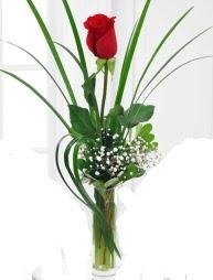Cam içerisinde 1 kırmızı gül  Tekirdağ çiçek gönderme