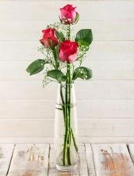 Cam içerisinde 3 kırmızı gül  Tekirdağ ucuz çiçek gönder