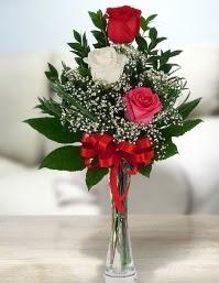 Camda 2 kırmızı 1 beyaz gül  Tekirdağ çiçekçi mağazası
