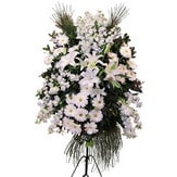Tekirdağ uluslararası çiçek gönderme  Ferforje beyaz renkli kazablanka