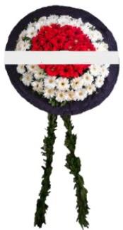 mozele çiçeği  Tekirdağ çiçek servisi , çiçekçi adresleri
