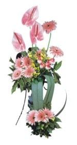 Tekirdağ online çiçekçi , çiçek siparişi  Pembe Antoryum Harikalar Rüyasi