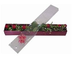 Tekirdağ çiçek online çiçek siparişi   6 adet kirmizi gül kutu içinde